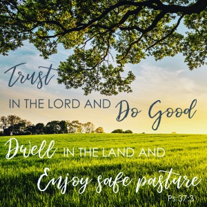 """Trust in the Lord and do good; dwell in the land and enjoy safe pasture."" Psalms 37:3"